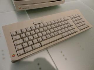 CIMG4586.JPG